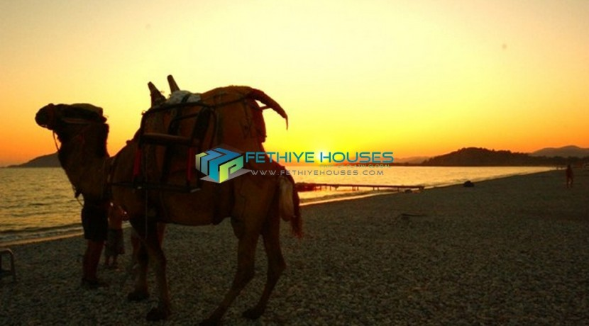 Продажа квартир в Турция  45